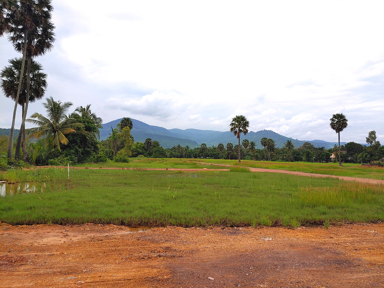 15449 Sq,m land next to stream for sale @ Kampot Province