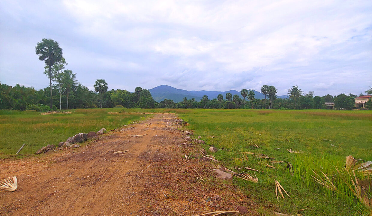 15449 Sq,m Land Next To Stream For Sale @ Kampot Province Img3