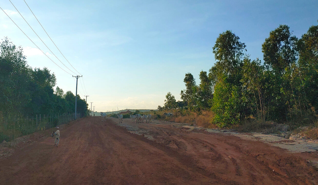 160 Hectares Land For Sale In Steung Chhay Commune Img2