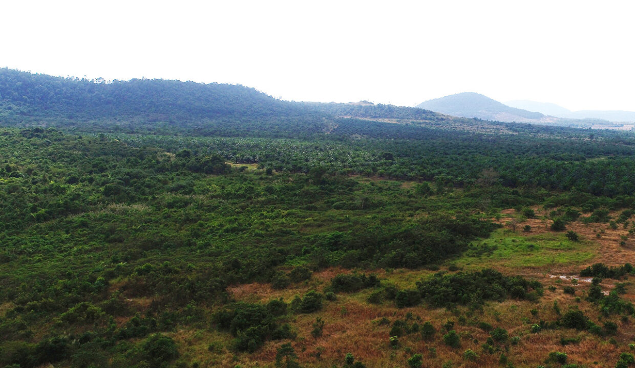 160 Hectares Land For Sale In Steung Chhay Commune Img4