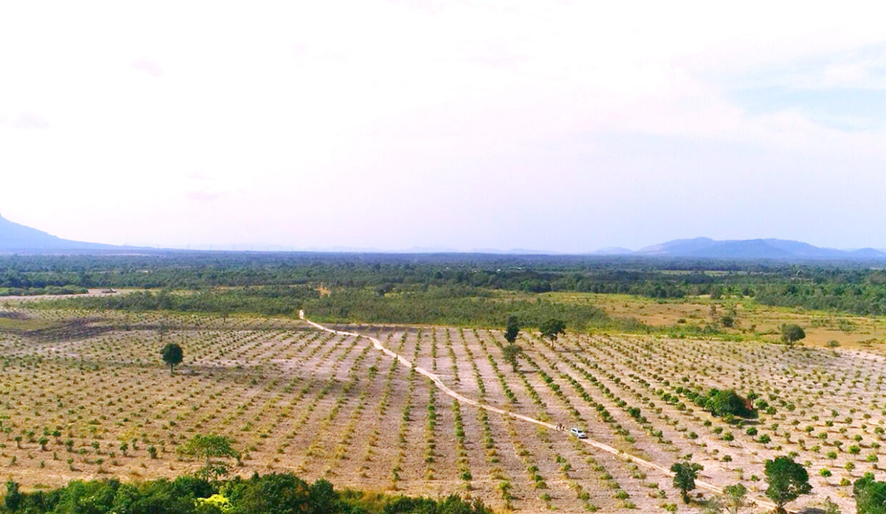 500 Hectares Land For Sale In Kampong Seila District Img1