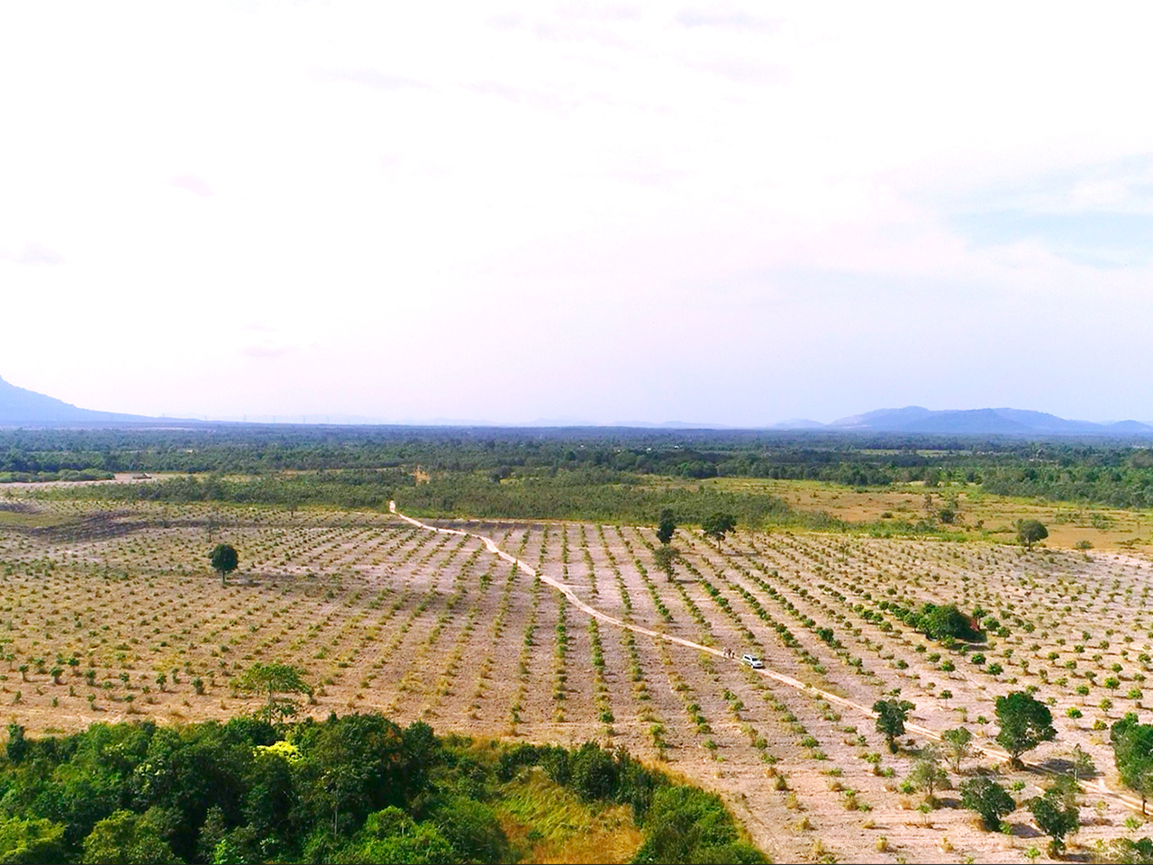 500 Hectares land for Sale in Kampong Seila District