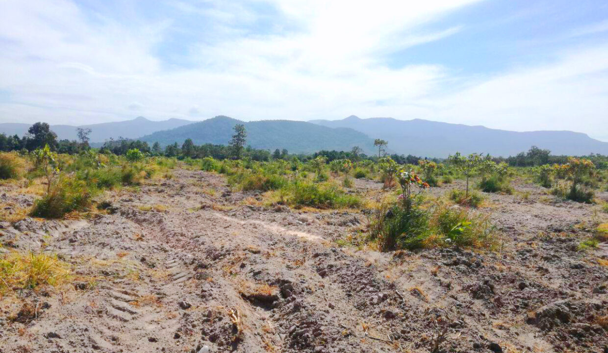 500 Hectares Land For Sale In Kampong Seila District Img2