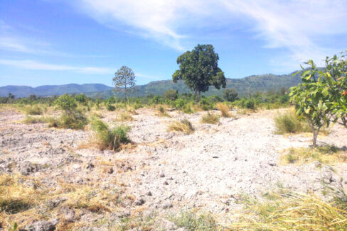 500 Hectares Land For Sale In Kampong Seila District Img3