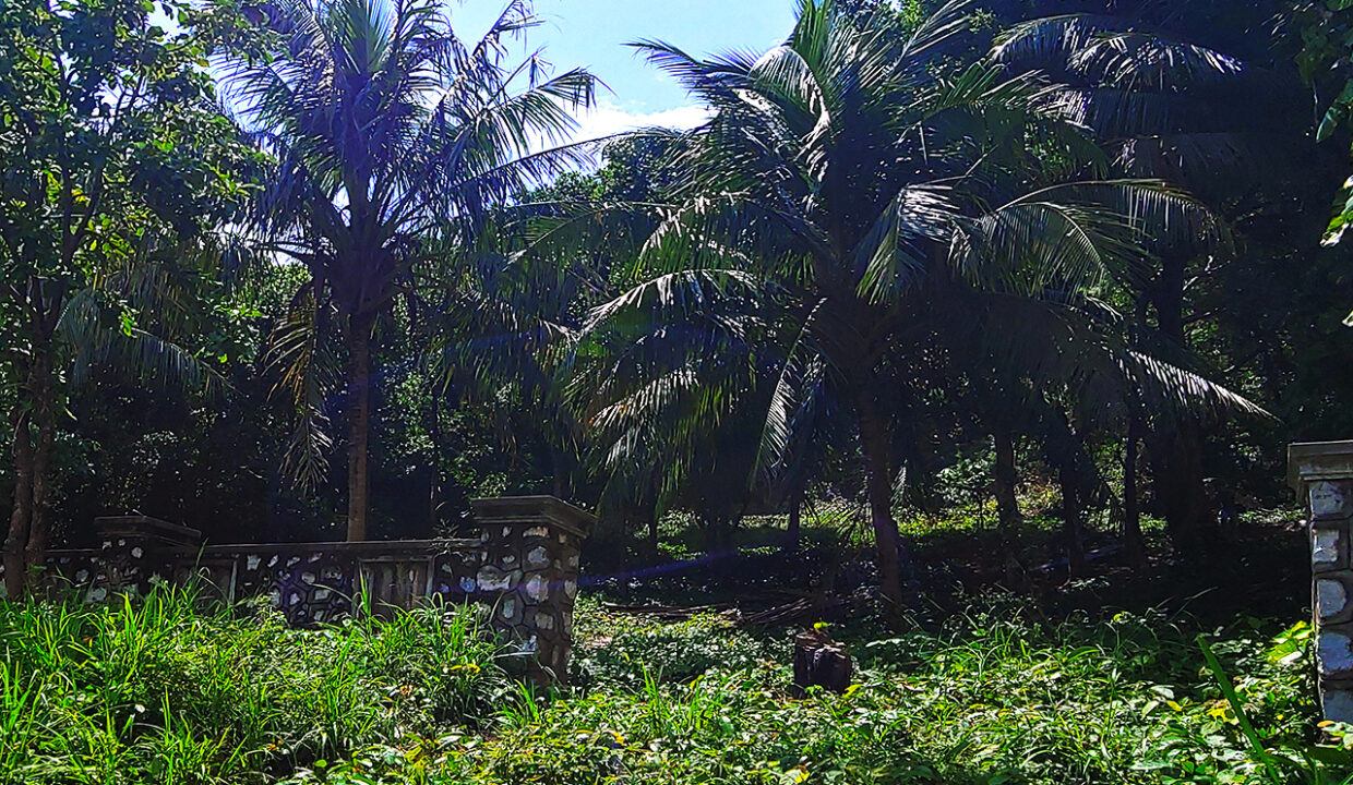 A Potential 809 Sq.m Land Near Kep Beach For Sale @ Krong Kep Img1