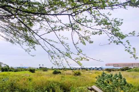 2 Ha Potential Land For Sale In 100 Off From Trung Morn Street Img3