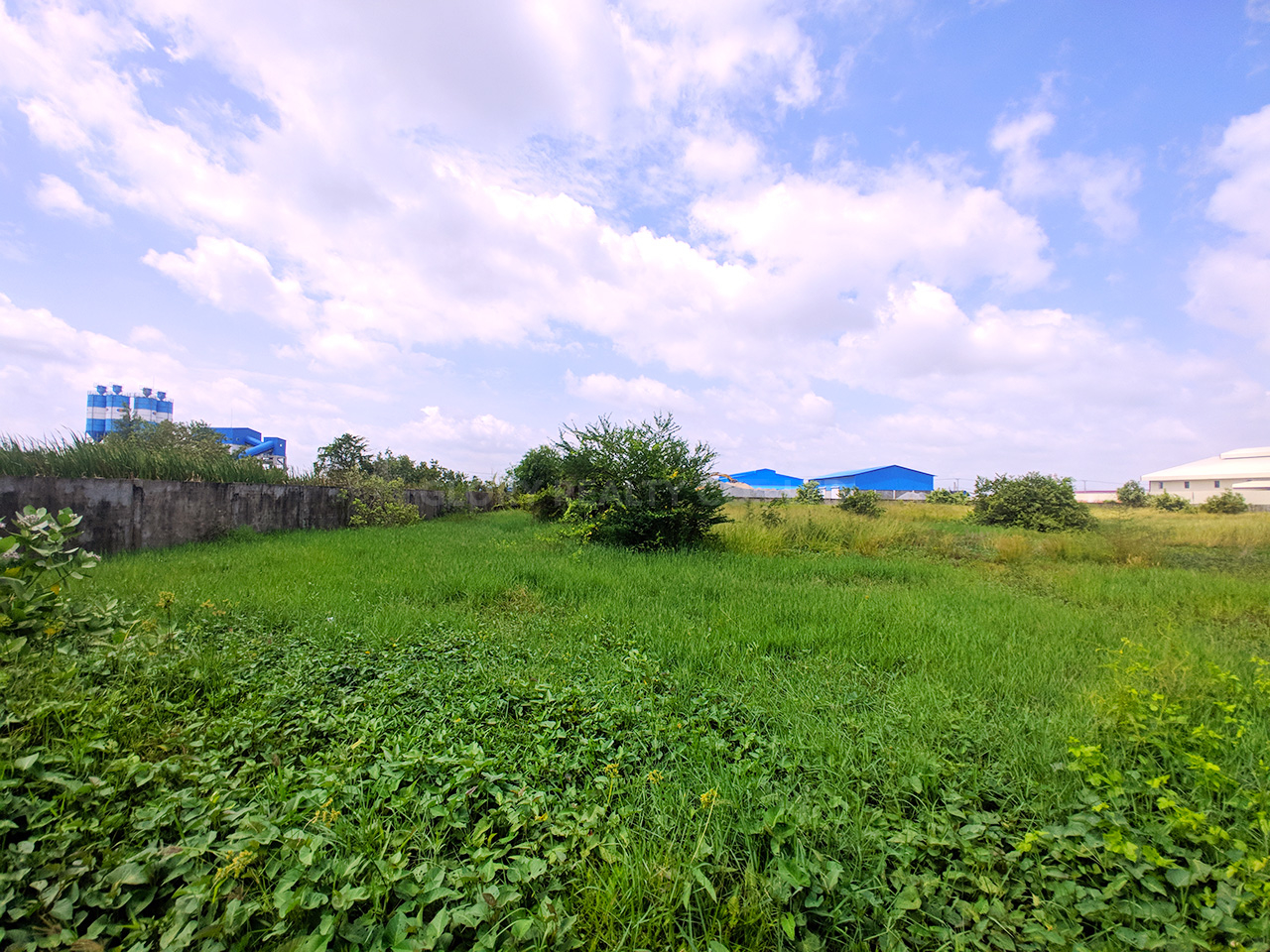9909 SQM potential land for sale @ Dangkao Commune