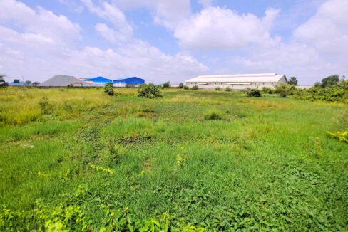 9909 SQM Potential Land For Sale @ Dangkao Commune Img2