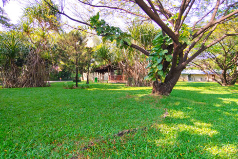 Amazing 2 Beds Condo With Garden, Pool For Rent Img12